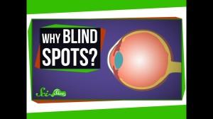 whyblindspots